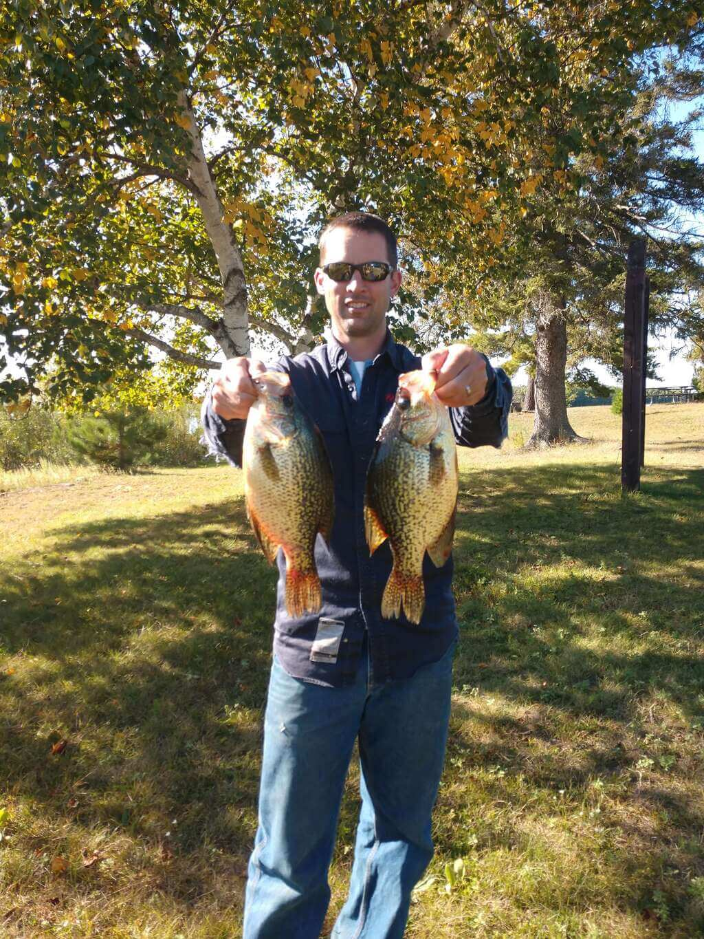 Pair of trophy crappies for the wall!!! Willow Flowage