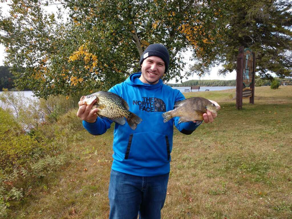 """Two more wall hangars. 16"""" Crappie and 12"""" Bluegill. Willow Flowage"""