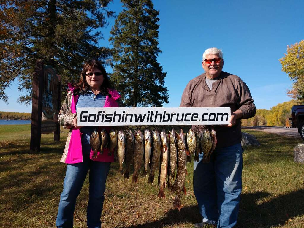 Great mixed Willow flowage bag