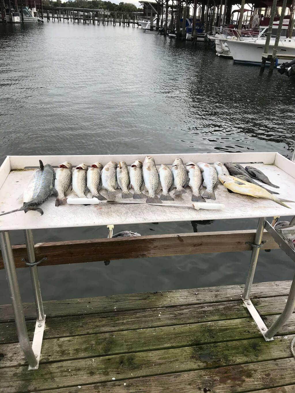 Captain Billy Farrar Fishing Charters
