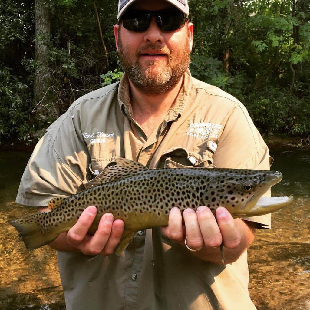 Brown Trout Fishing Guide In Iowa