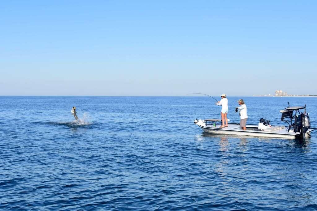 Tarpon Fishing on Gulf Shores