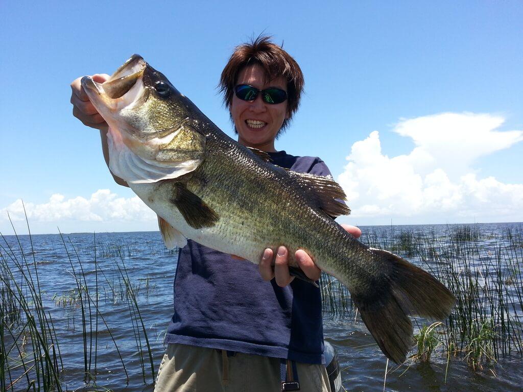 Bass Fishing Guide In Toho Lake