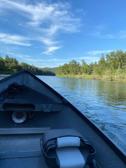 Salmon, Steelhead & Trout Fishing Guide