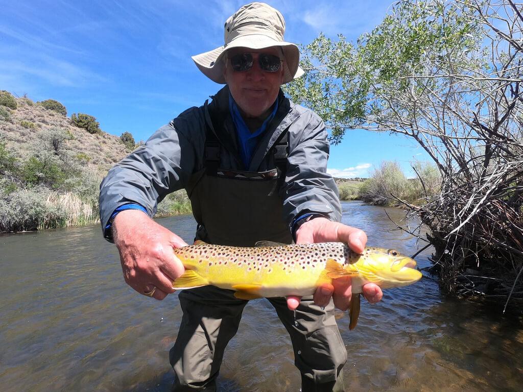 East Walker River Fishing Guide