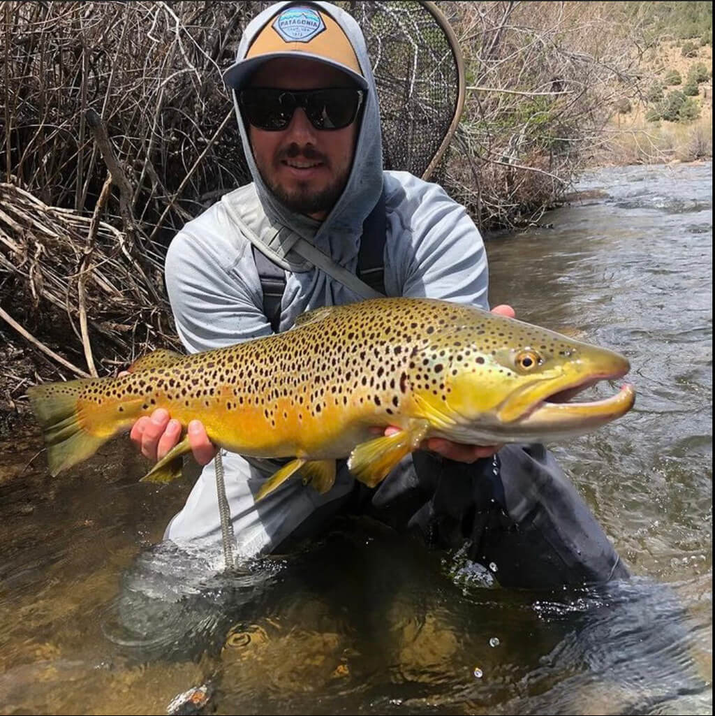 Fish Caught on East Walker River