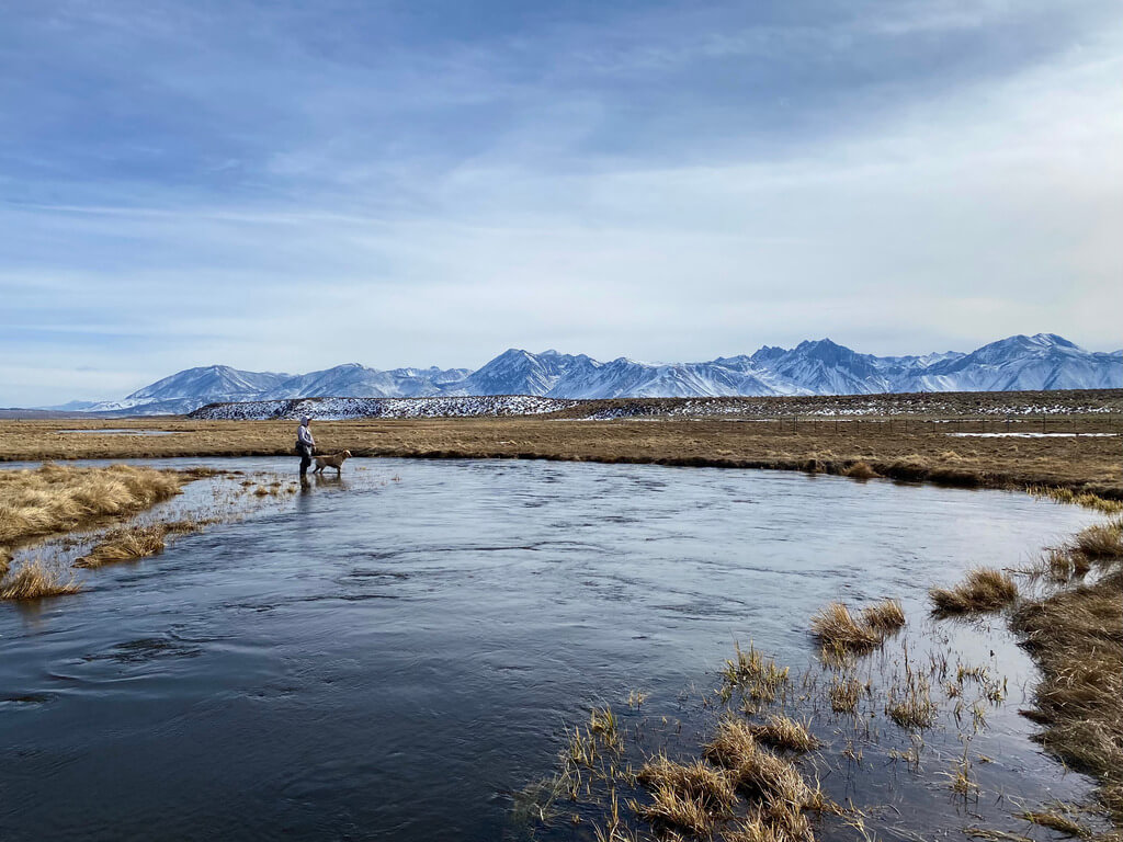 Fishing Guide on Upper Owens River
